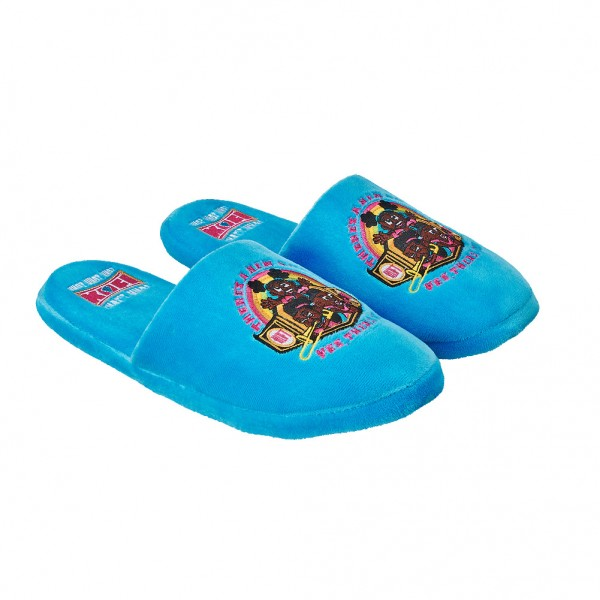 """The New Day """"There's A New Champ"""" Slippers"""