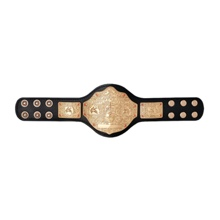 World Heavyweight Championship Mini Replica Title Belt