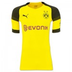 BVB Authentic evoKNIT Home Shirt 2018-19