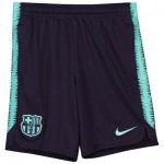 Barcelona Squad Training Shorts - Purple - Kids