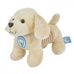 Manchester City Springy Puppy